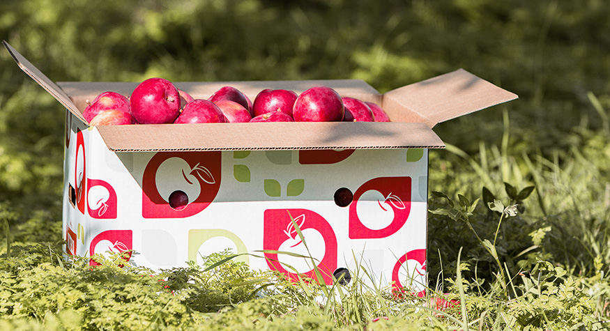 Cascades die-cut corrugated box for fruits and vegetables
