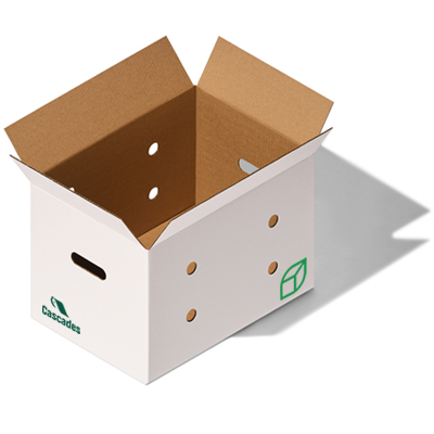 Cascades die-cut produce box